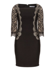 Gina Bacconi Knee length cocktail dress Black / Cream